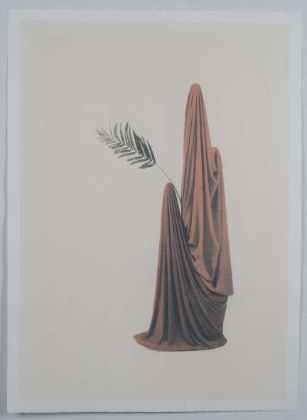 Untitled Veils